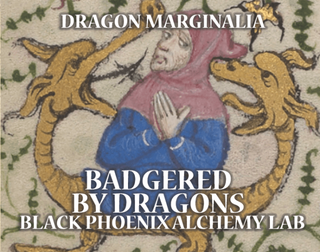 Badgered by Dragons